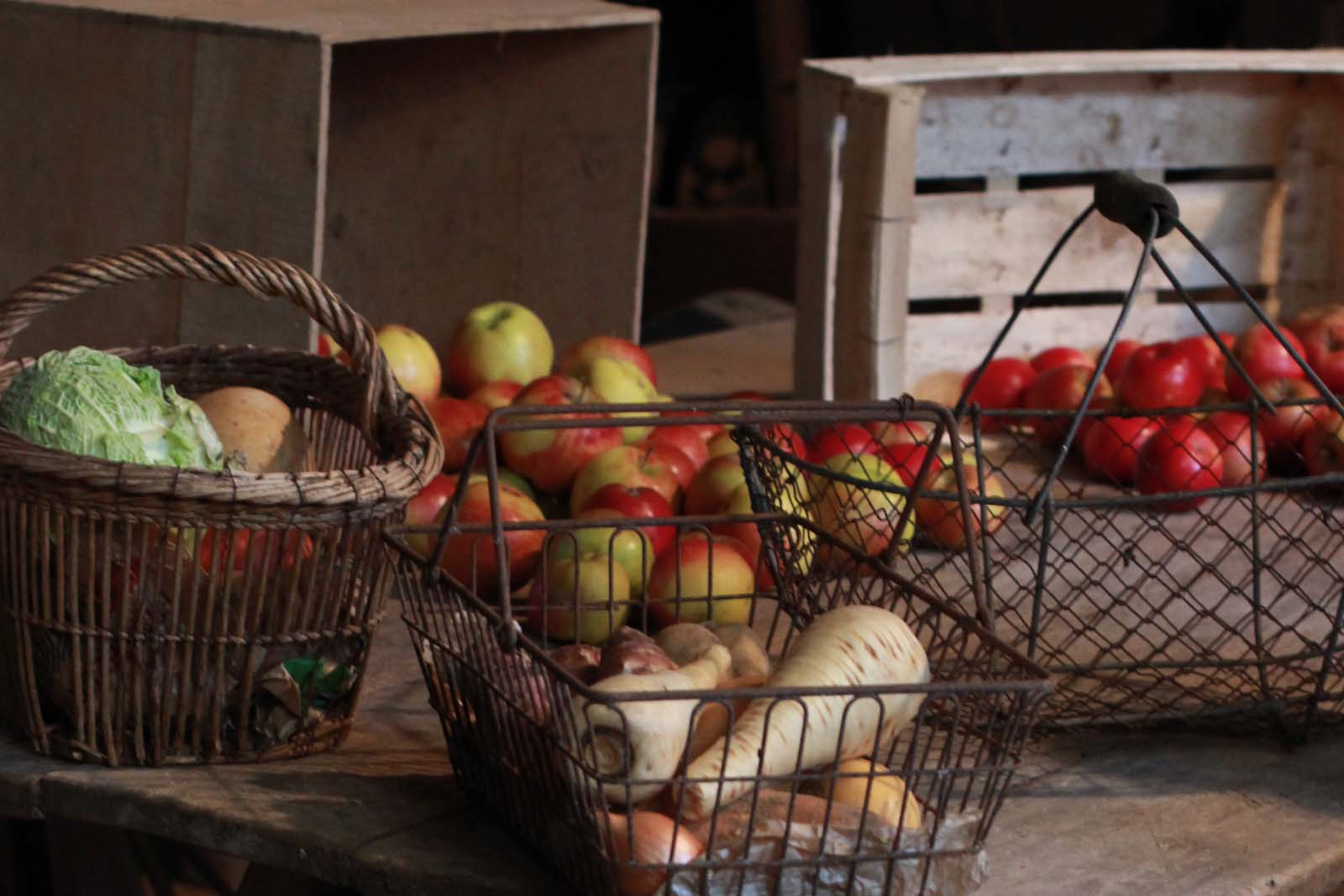 anne-thierry-herbergement-legumesgrange-maison paulette